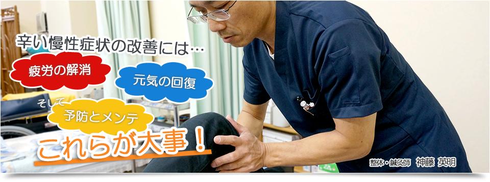 訪問専門 整体院/鍼灸・マッサージ治療院|大阪府寝屋川市の整体・鍼灸の治療院|肩こり・腰痛・五十肩なら当院までお問い合わせください。